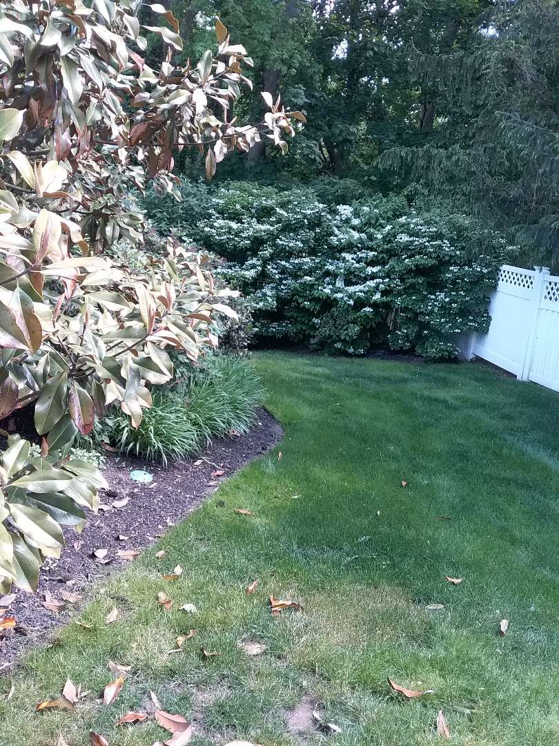 Morristown, NJ - Repaired irrigation system