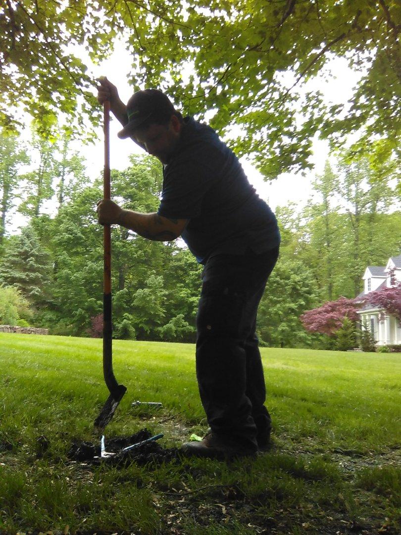 Livingston, NJ - Replace sprinkler head