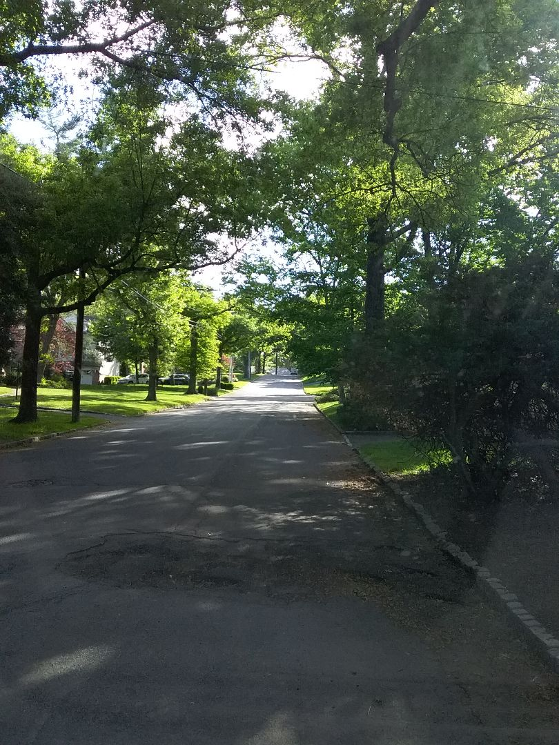 Millburn, NJ - What a great day to get your sprinkler system up and running