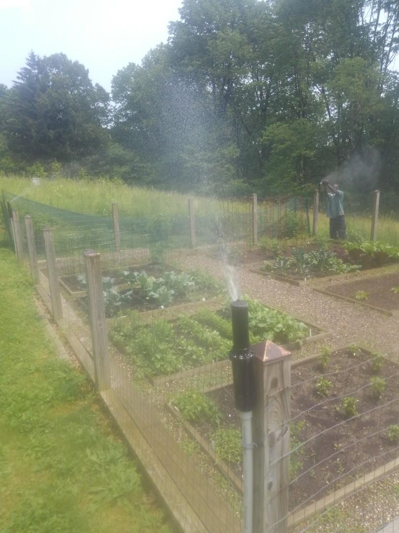 Check sprinkler system for garden zone