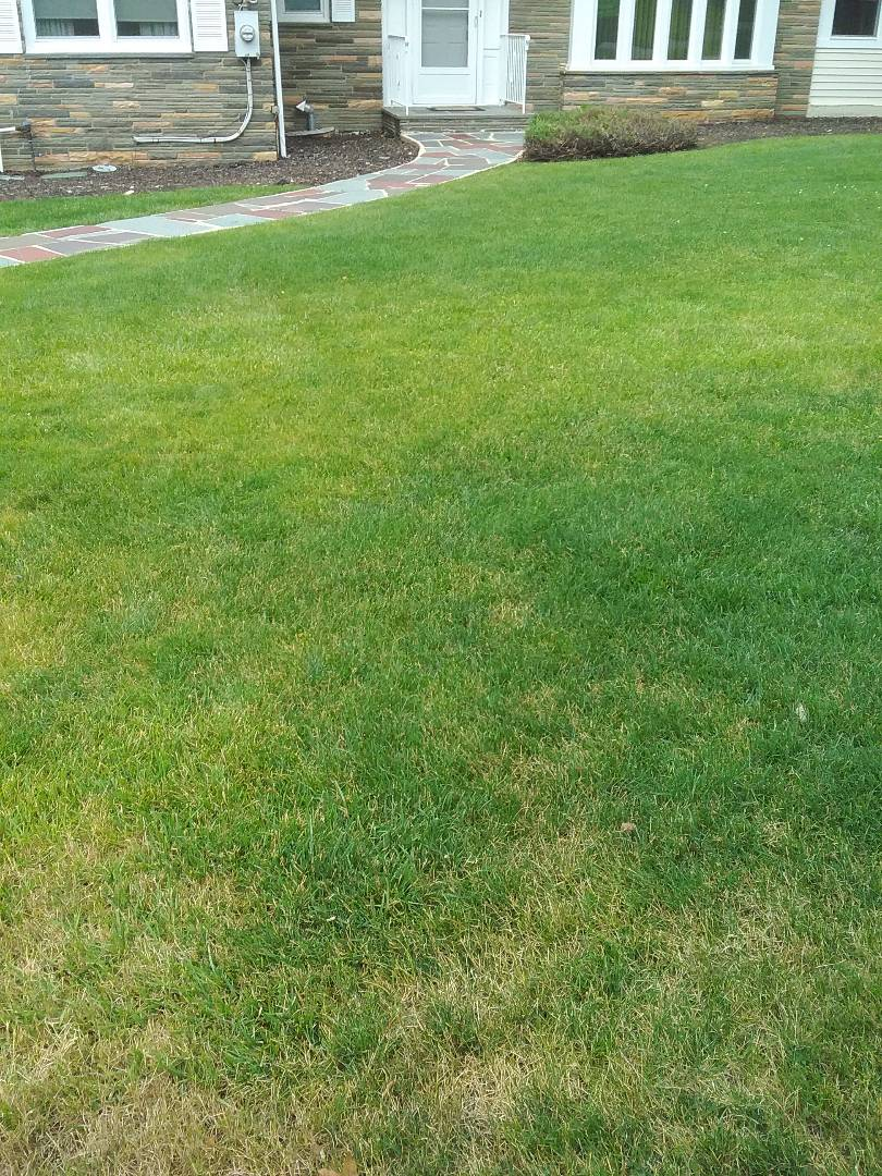 Kinnelon, NJ - Applying granulated fertilizer, lime, treating for weeds, insects and grubs, and preparing lawn for seasonal aeration, all backed by a green lawn guarantee!!! =)