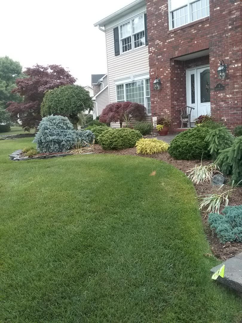 Caldwell, NJ - Sprinkler system inspection!!! =)
