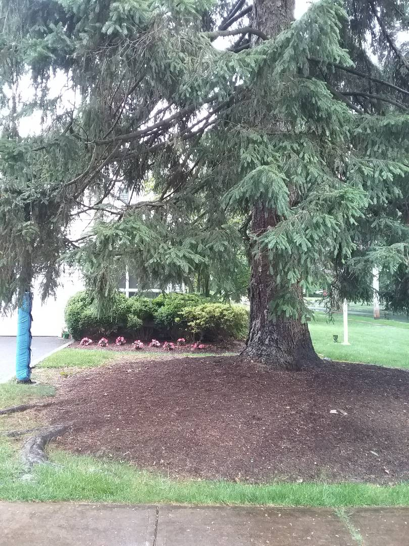 Caldwell, NJ - Rain or shine, you can always depend on All Wet for your sprinkler system service!!! =)