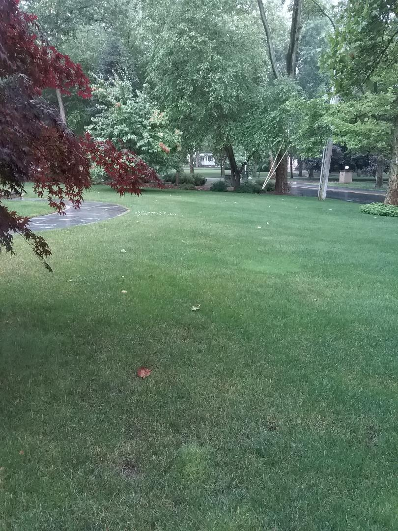 Caldwell, NJ - Applying granular fertilizer, lime, treating for weeds and preparing lawn for seasonal aeration, all backed by a green lawn guarantee!!! =)