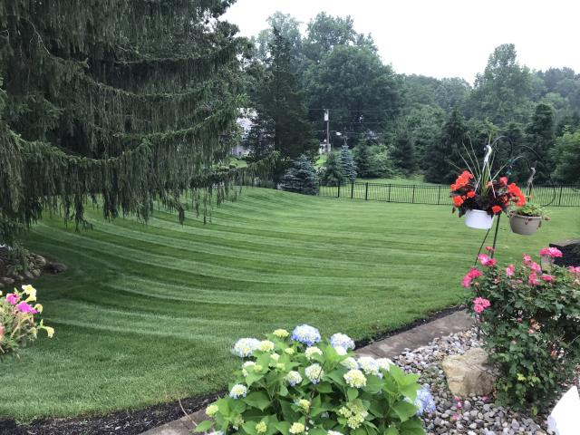 Kinnelon, NJ - Providing customers with a beautiful, green, weed free lawn.