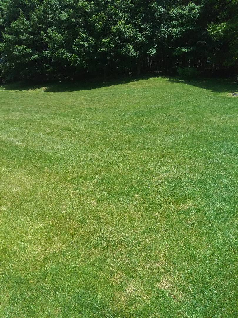 Mount Olive Township, NJ - Applying granular fertilizer, lime, treating for weeds, insects and grubs, all in preparation for seasonal aeration. Backed by a green lawn guarantee!!! =)