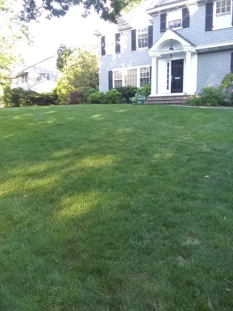 Bernards, NJ - Applying granular fertilizer, lime, treating for weeds, insects and grubs, in preparation for seasonal aeration, backed by a green lawn guarantee!!! =)