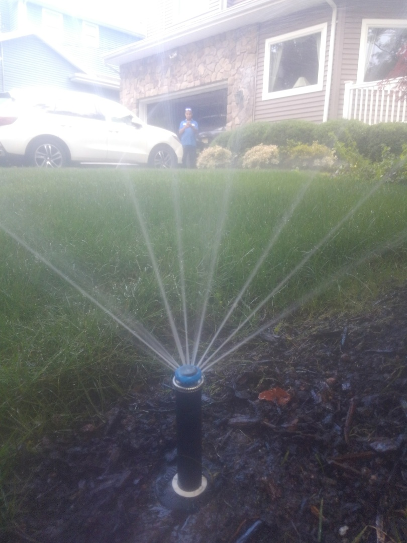 Denville, NJ - Replace broken sprinkler heads.