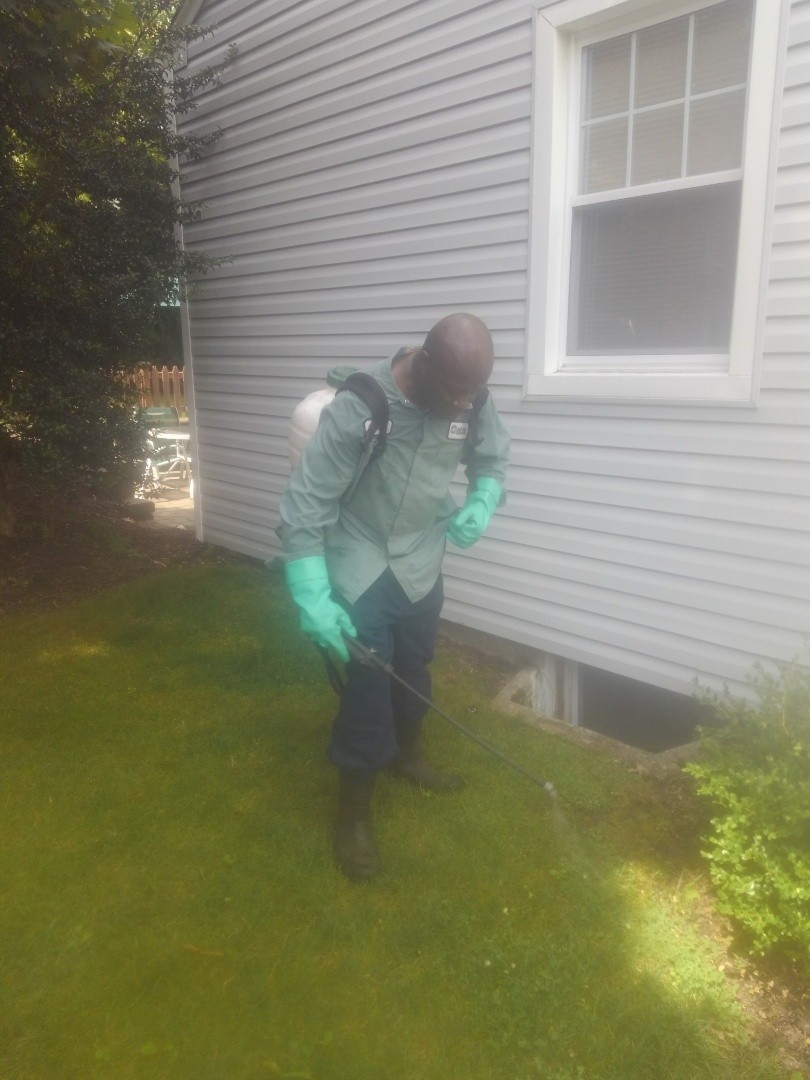 New Providence, NJ - Spraying weed killer and fertilize property for great green lawns.