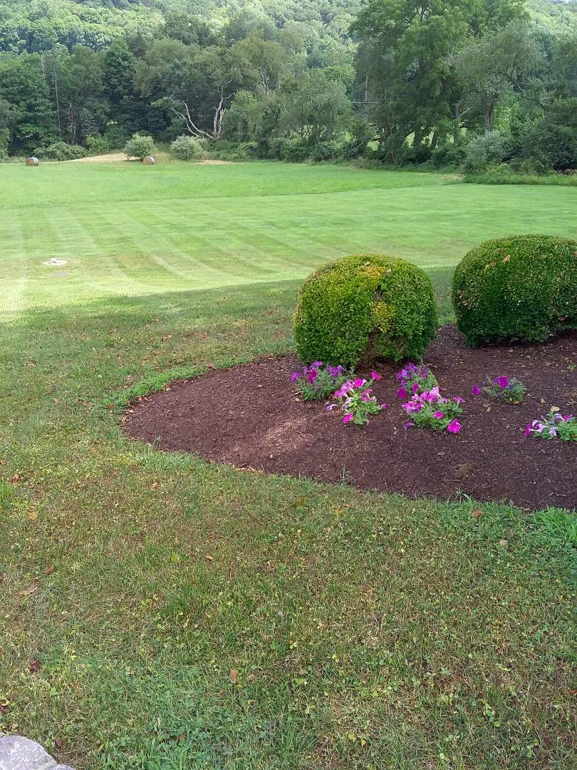 Far Hills, NJ - Applying granulated fertilizer, treating for weeds, insects and grubs, in preparation for seasonal aeration, backed by a green lawn guarantee!!! =]