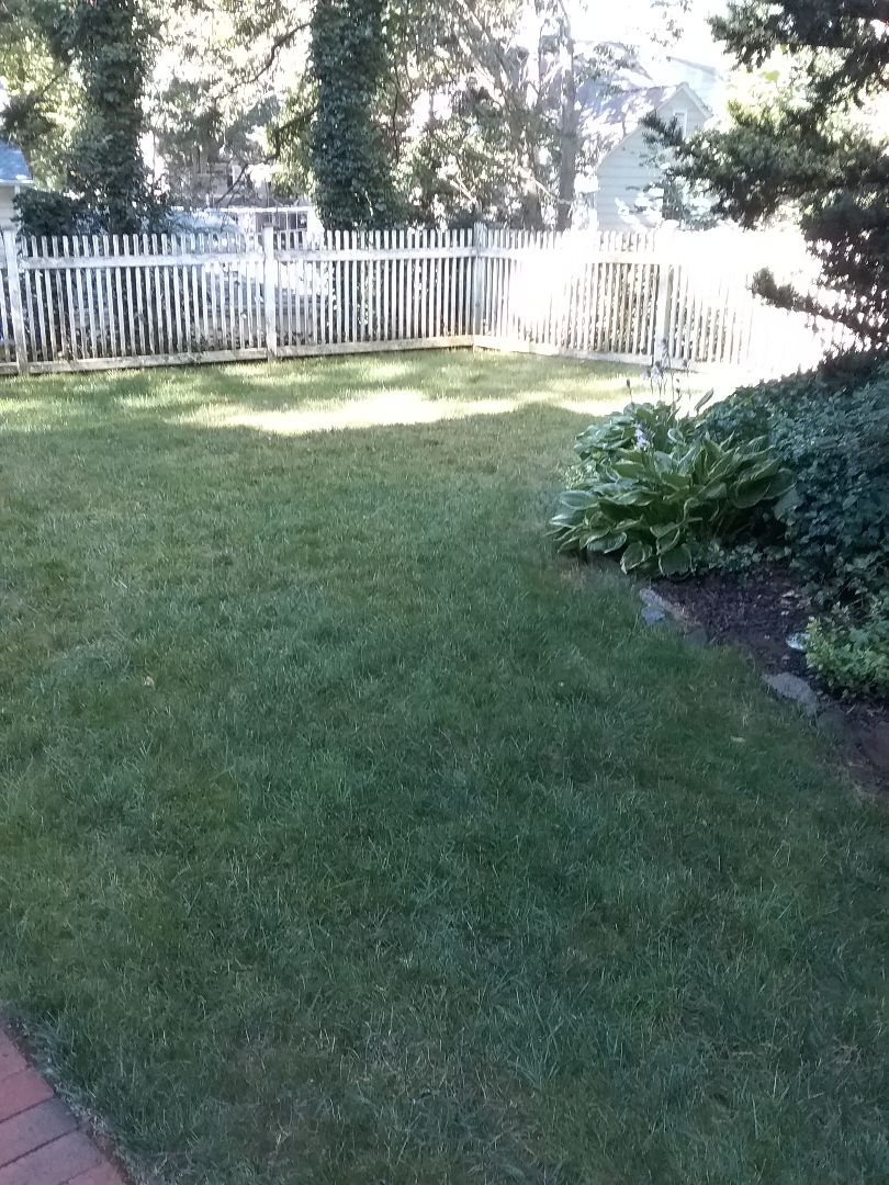 Millburn, NJ - Applying granular fertilizer, treating for weeds, insects and grubs, in preparation for seasonal aeration, backed by a green lawn guarantee!!! =)