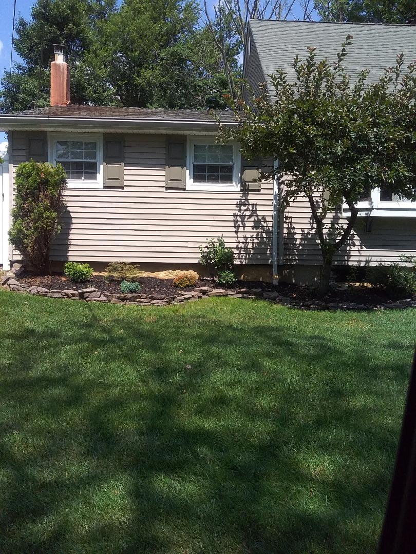Chester, NJ - Treated for a variety of weeds as part of homeowner 7 application lawn care program backed by a green lawn guarantee!!! =)