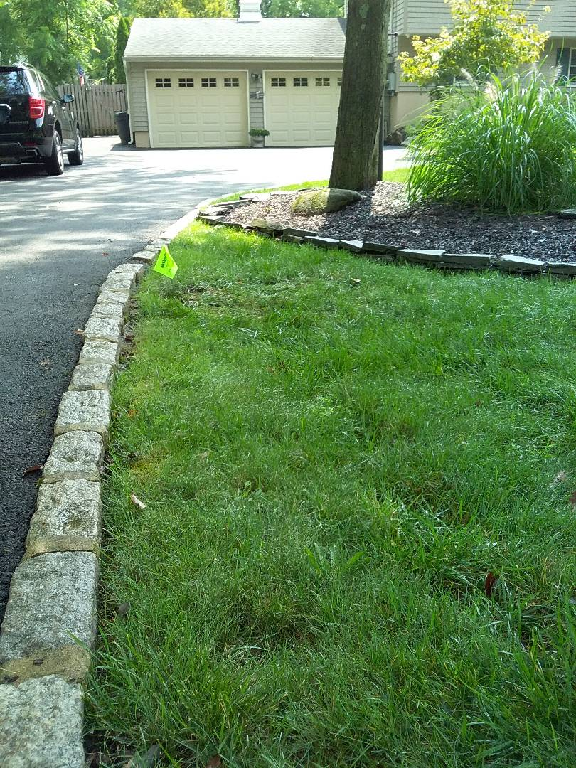 Parsippany-Troy Hills, NJ - Replace rotary heads in the sprinkler system