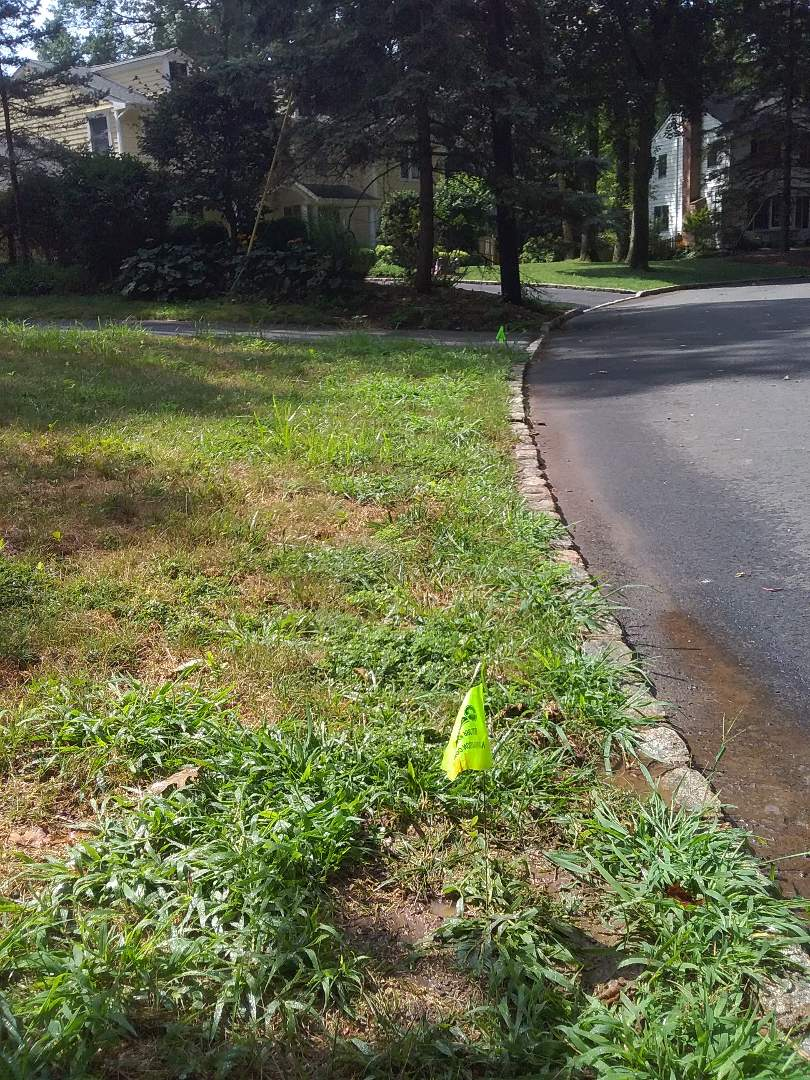 Florham Park, NJ - Replace rotary heads in the irrigation system