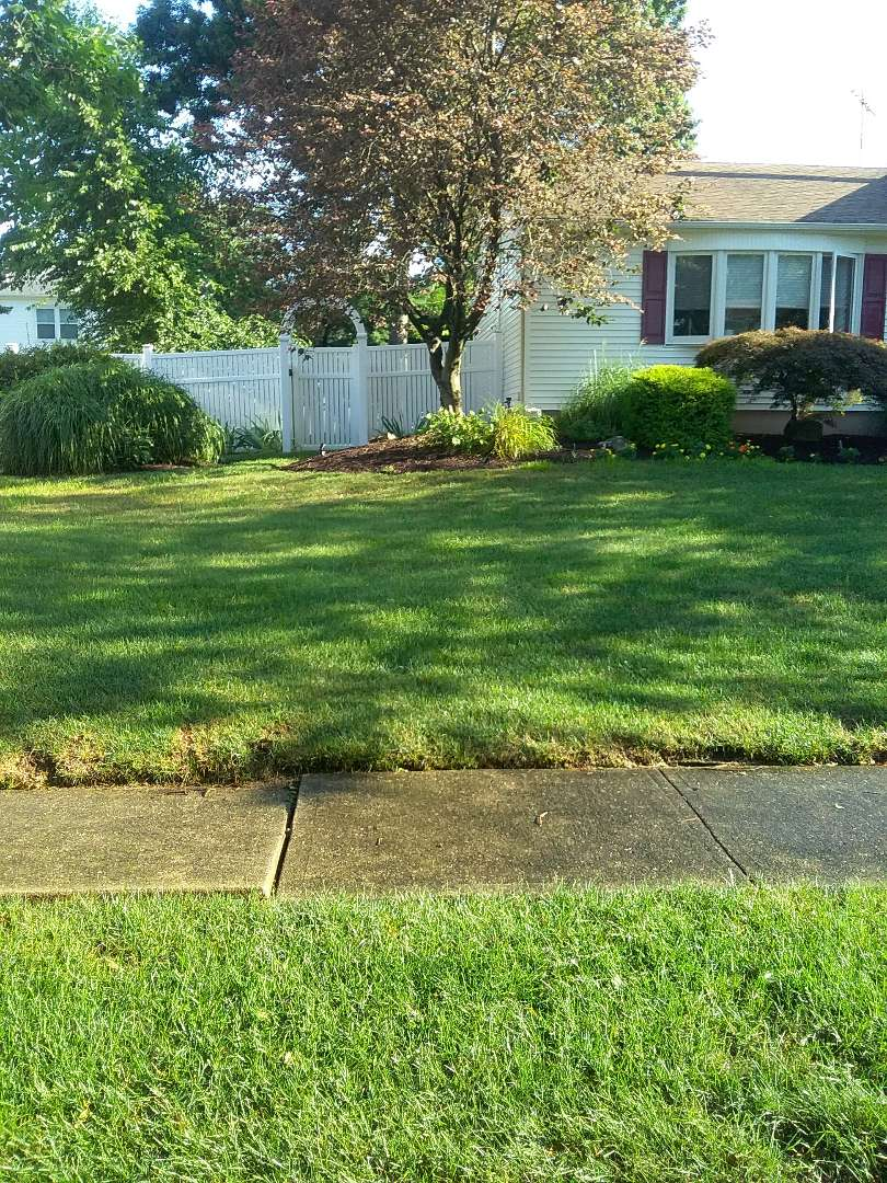 Summit, NJ - Replace rotary heads in the irrigation system