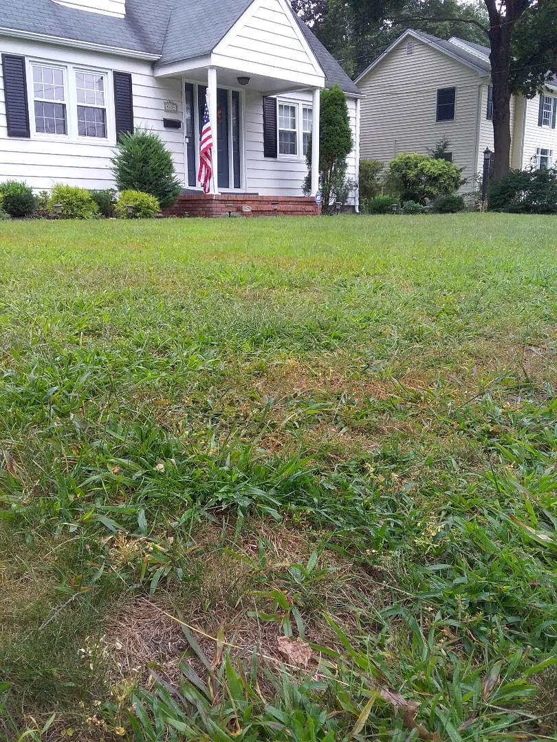 Quality control lawn service call for new customer!!! =)