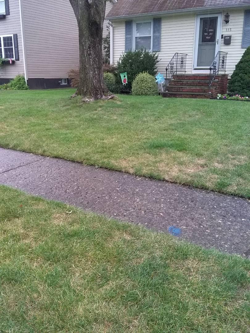 Quality control lawn care service!!! =)