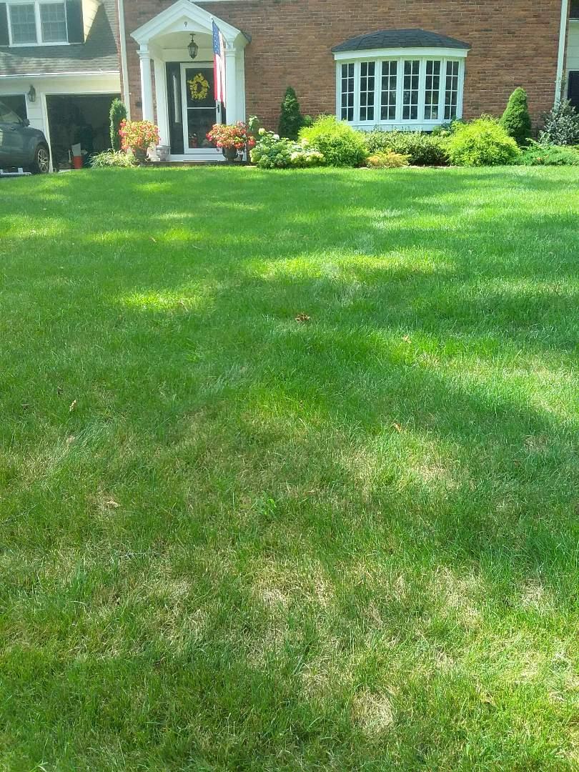 Millburn, NJ - Repaired leaky irrigation zone line