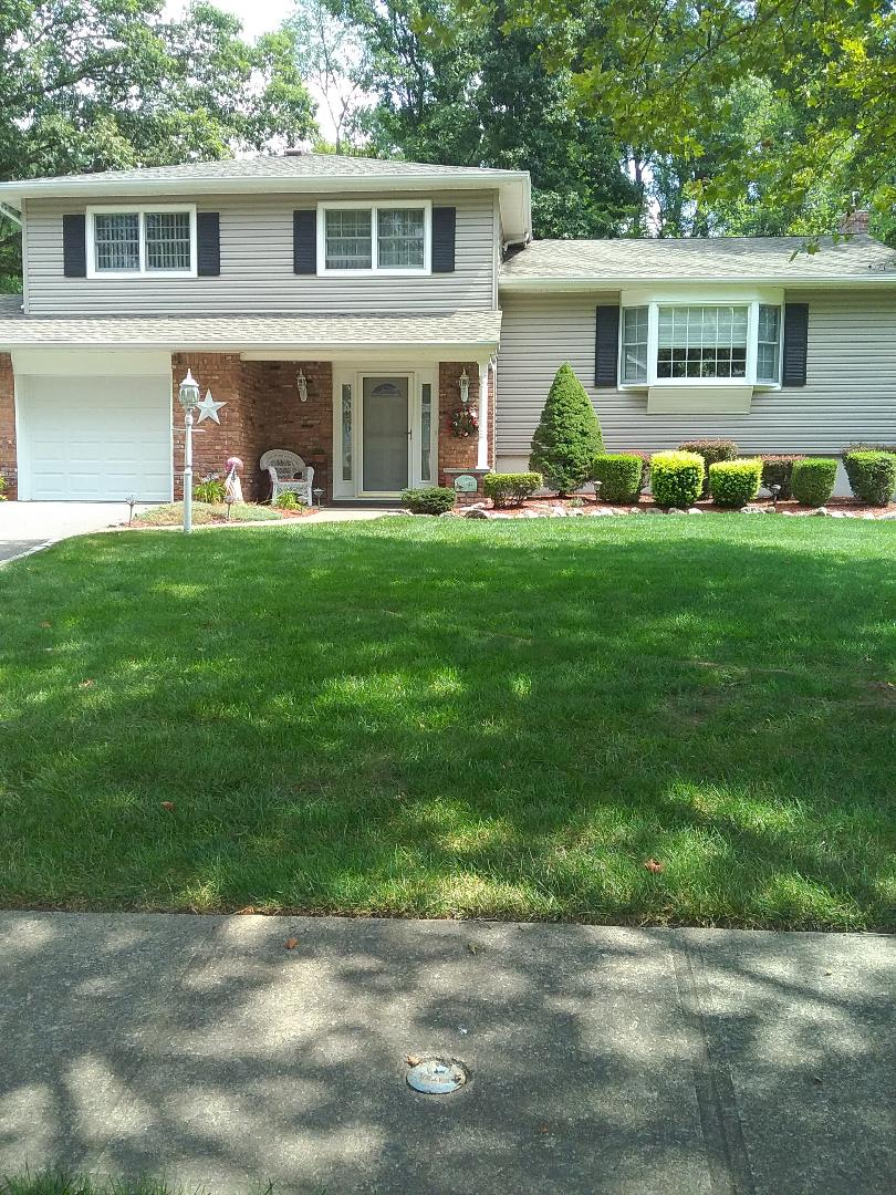 Randolph, NJ - Estimate for aeration and overseeding to build a strong, green, lush lawn!!! =)
