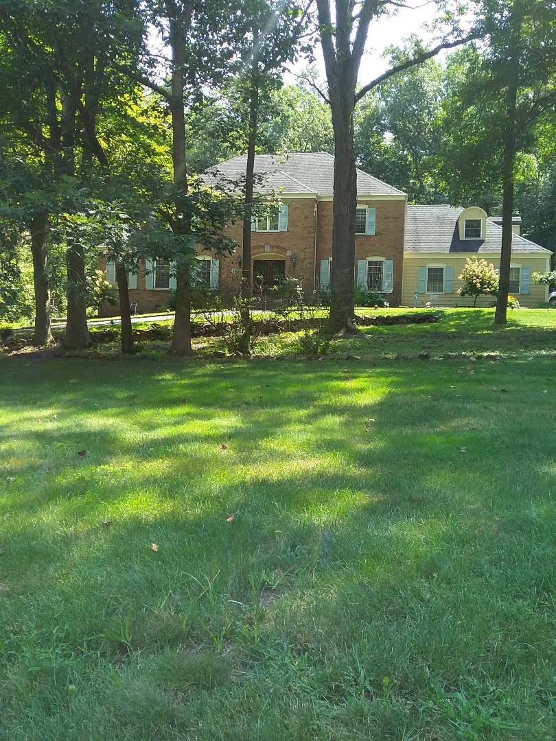 Randolph, NJ - Applied late summer fertilizer, insect & grub control, and blanket sprayed lawn for weeds!!! =)