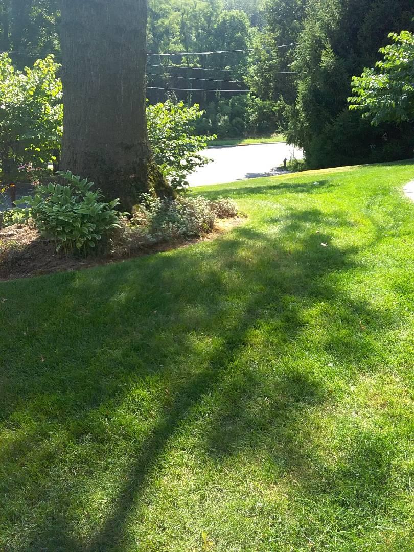 Millburn, NJ - Replaced 4 zones irrigation valve manifold that was leaking