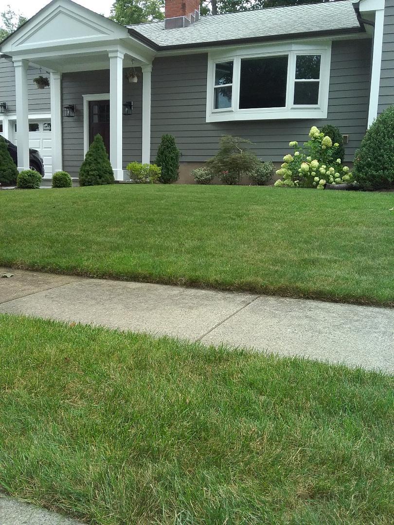 Montclair, NJ - Lawn care quality inspection service!!! =)