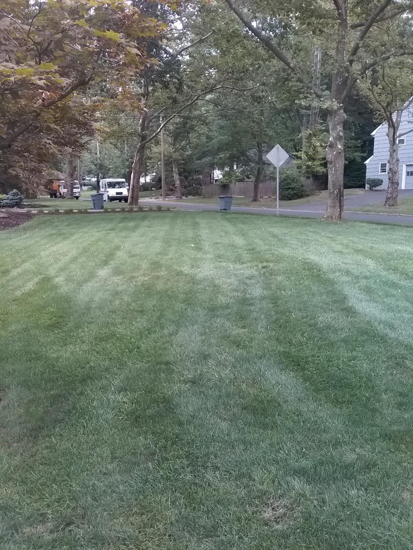 East Hanover, NJ - Increased the irrigation run times do to brown spots