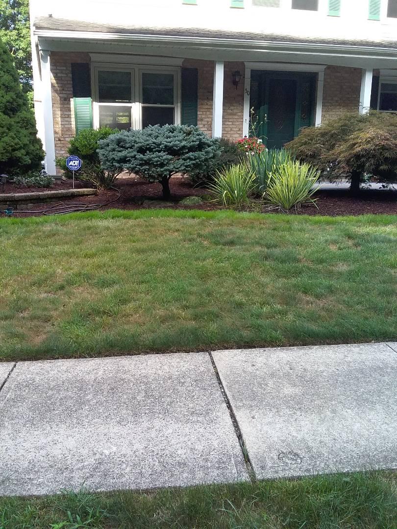 Estimate for lawn care services!!! =)