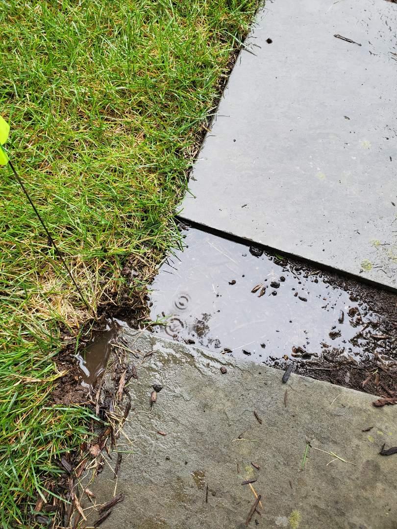 Harding Township, NJ - Replace broken sprinkler heads that were leaking