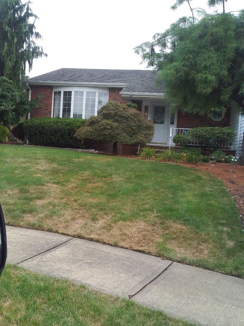 Quality inspection for lawn care service!!! =)