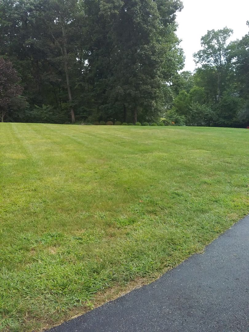 Sparta, NJ - Irrigation inspection / winterize and fertilize