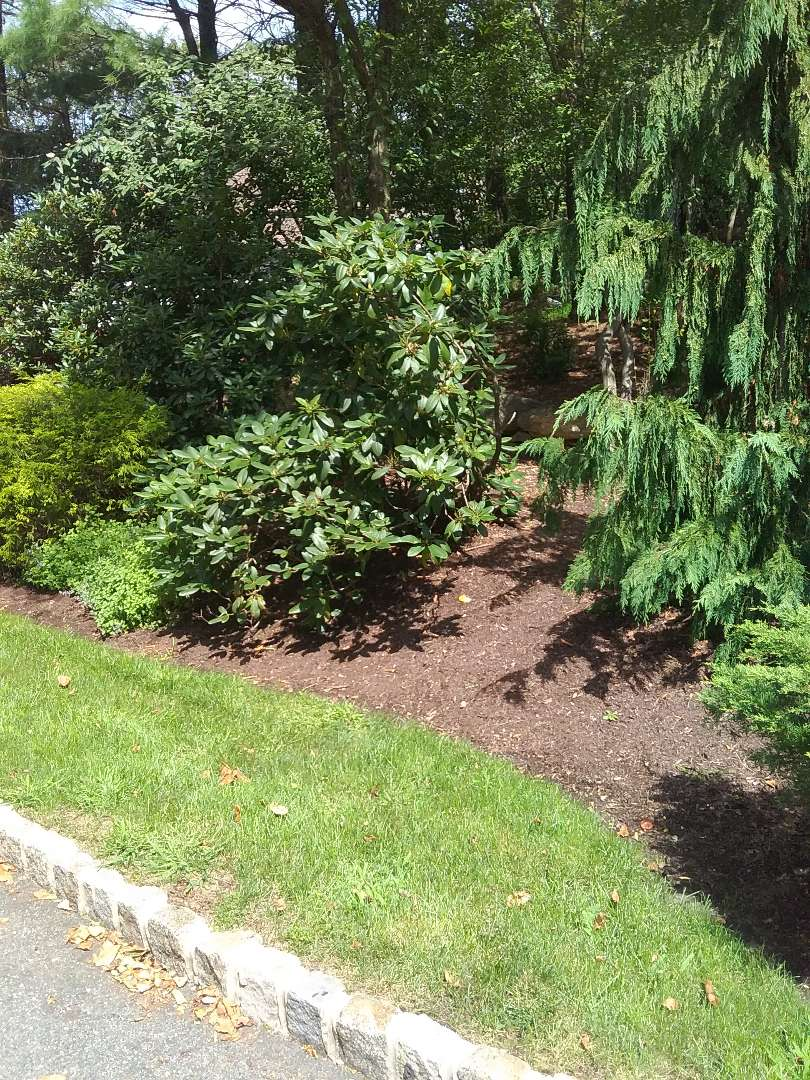 Sparta, NJ - Low voltage lighting/ irrigation / winterizing