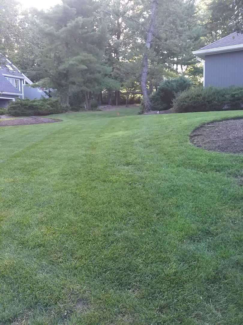 East Hanover, NJ - Fertilisation irrigation low voltage landscape lighting