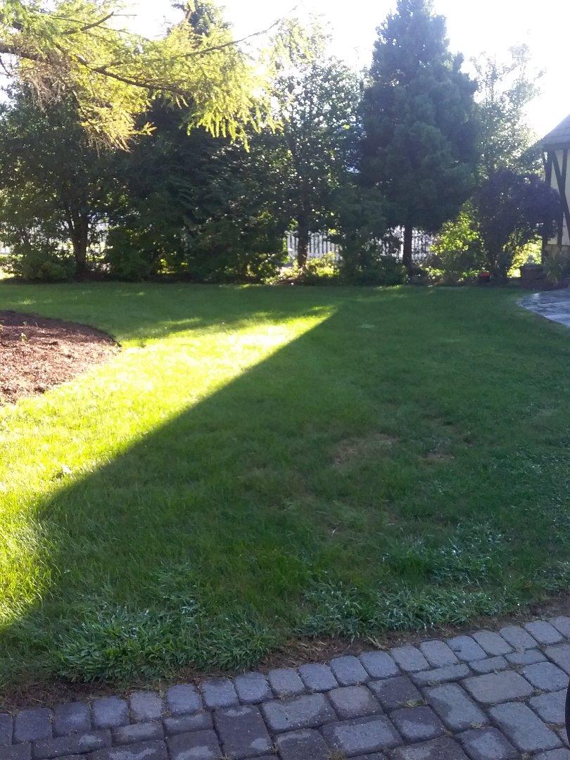 Fertilisation  Irrigation/winterize  Low voltage landscape lighting