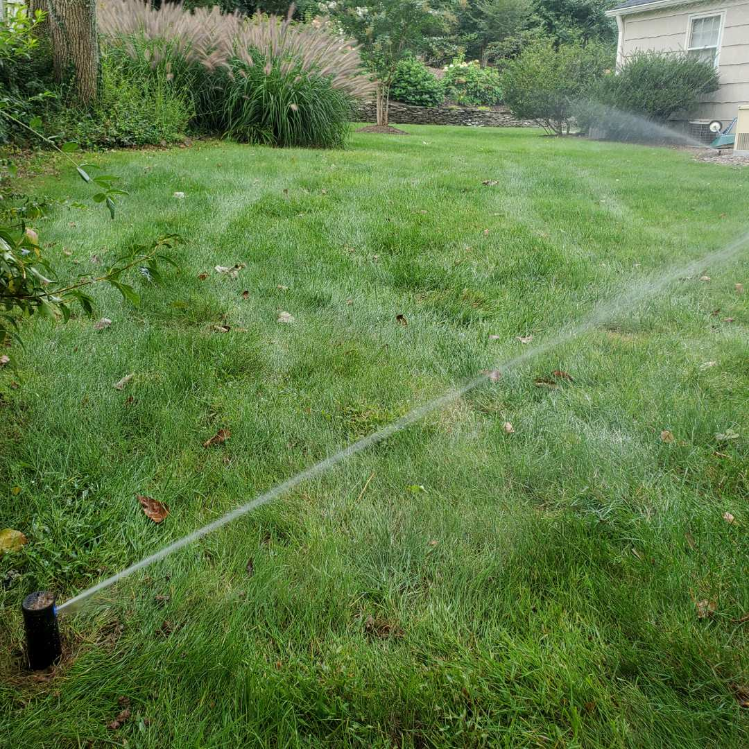 Replace broken sprinkler head