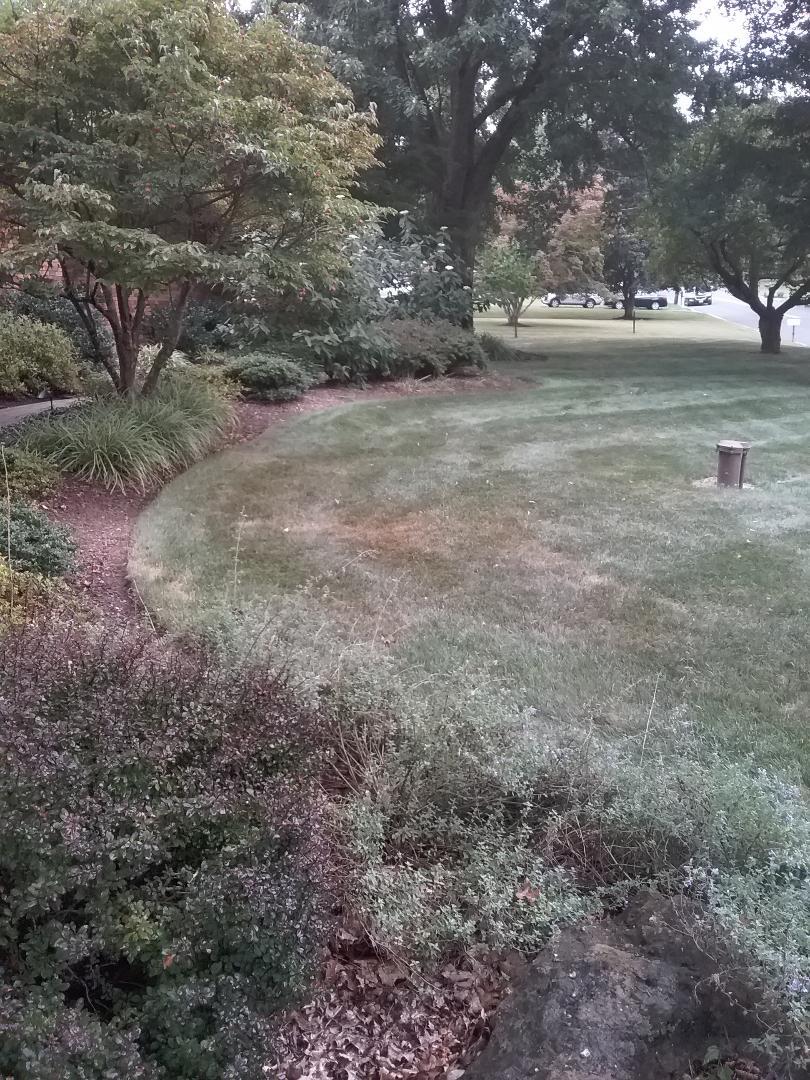 Fertilisation  Irrigation  Low voltage landscape lighting