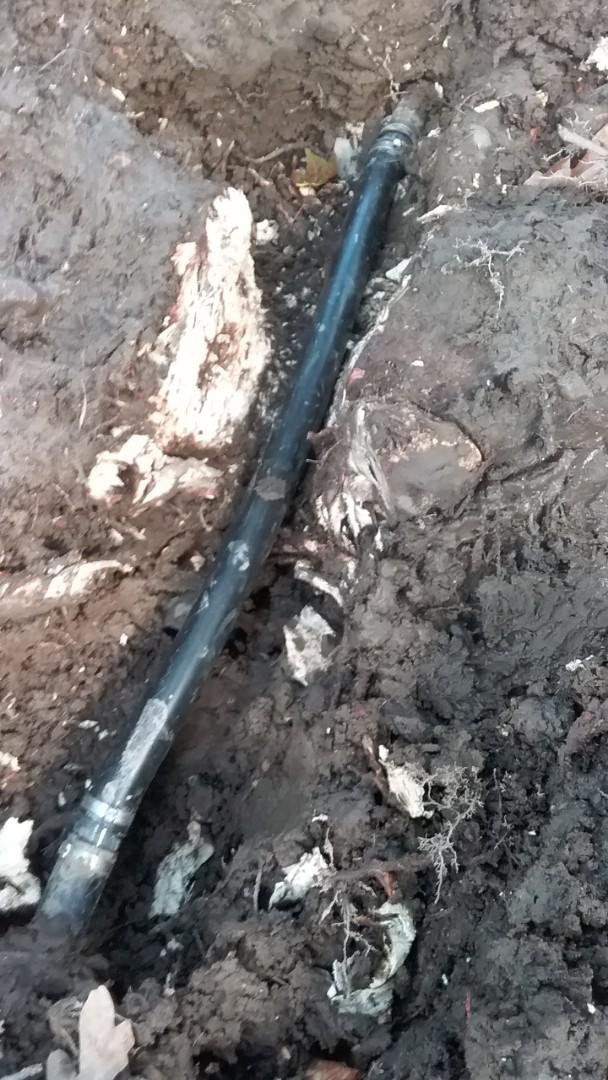 Broken sprinklers