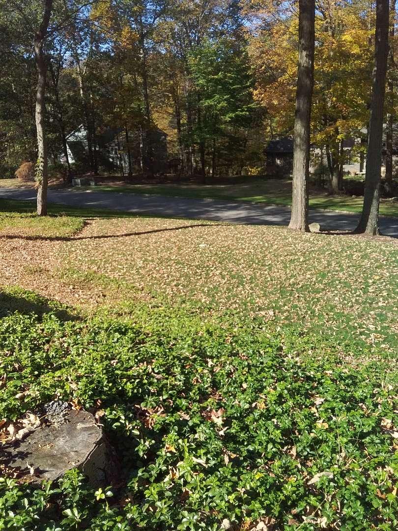 Irrigation winterization shut down