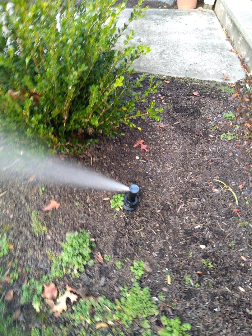 Winterize your sprinkler irrigation system. Drain out. Blow out.