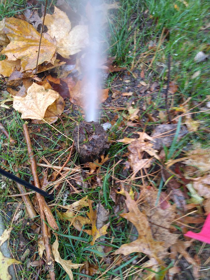 Winterize your sprinkler irrigation system. Drain out. Blow out. Montclair NJ