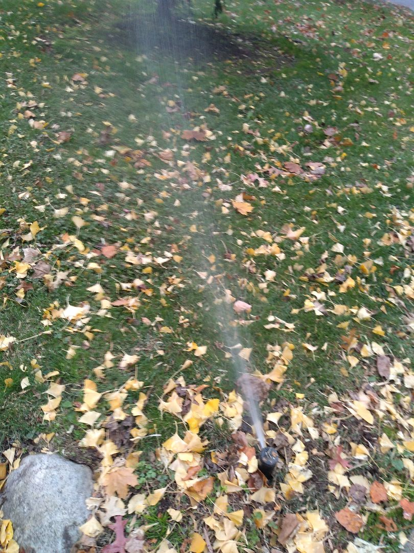 Winterize your irrigation sprinkler system. Drain out. Blow out
