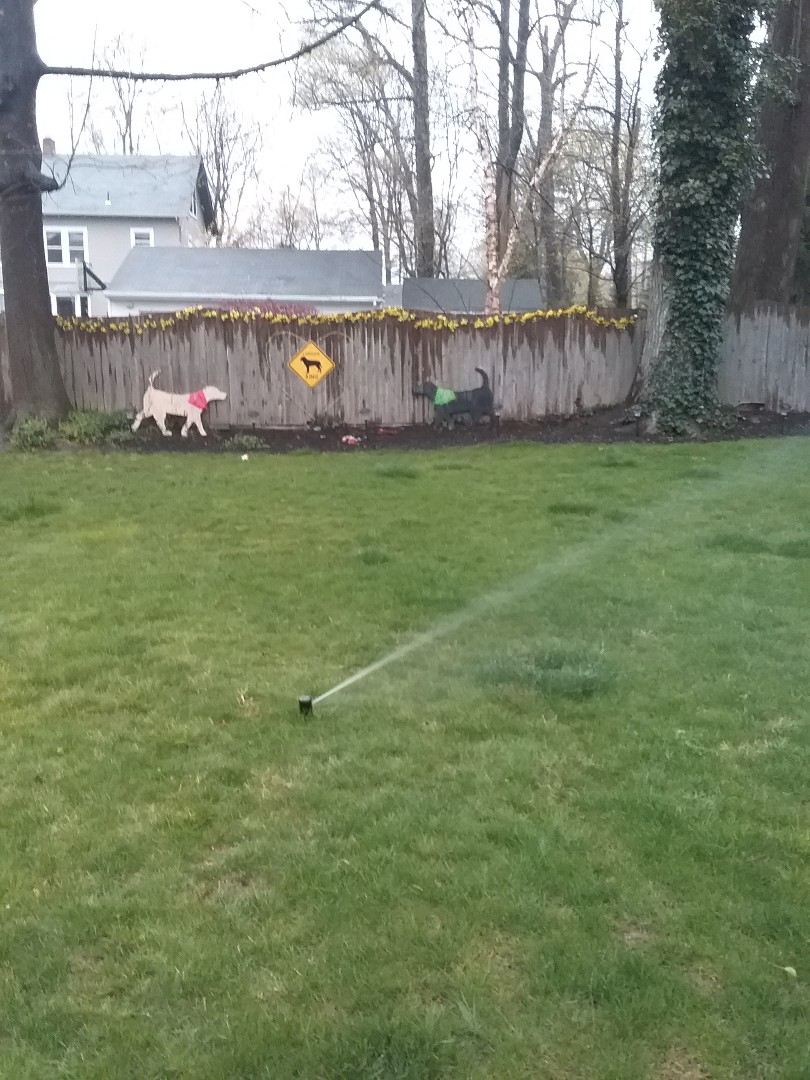 Gladstone, NJ - Spring Start up sprinkler. Turn on irrigation system. Install new controller