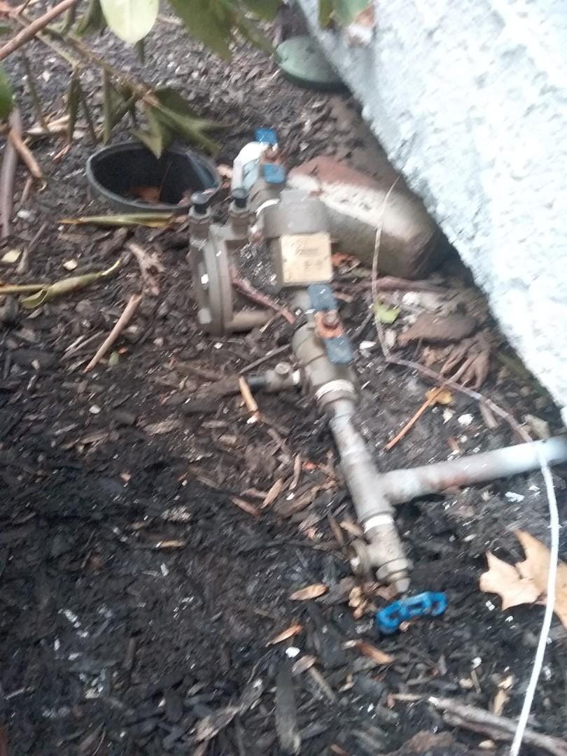 South Orange, NJ - Irrigation activation, start up, adjustments