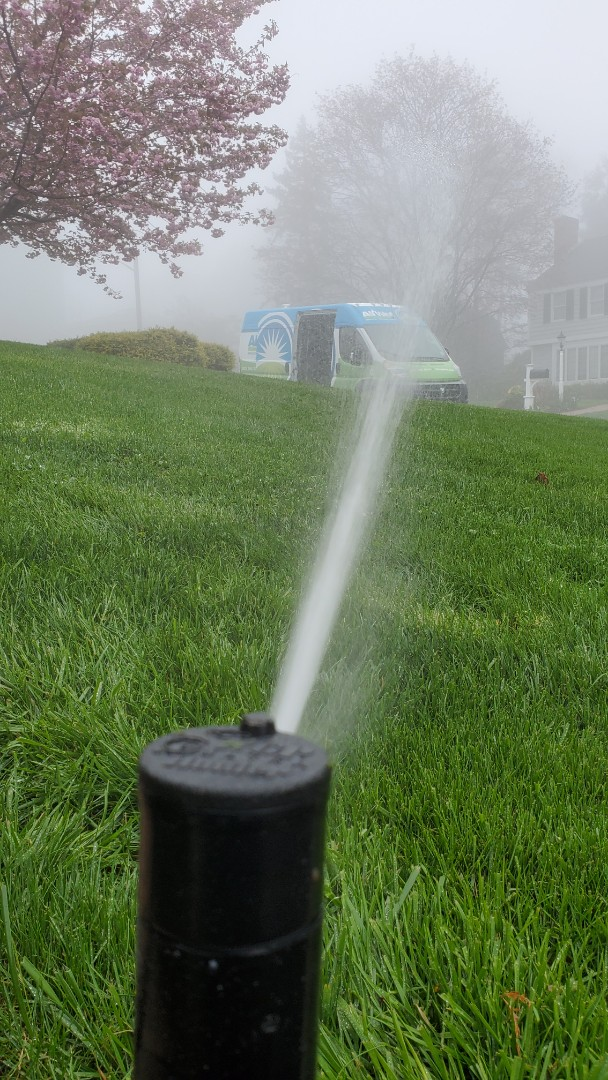 Replace sprinkler head that was not rotating