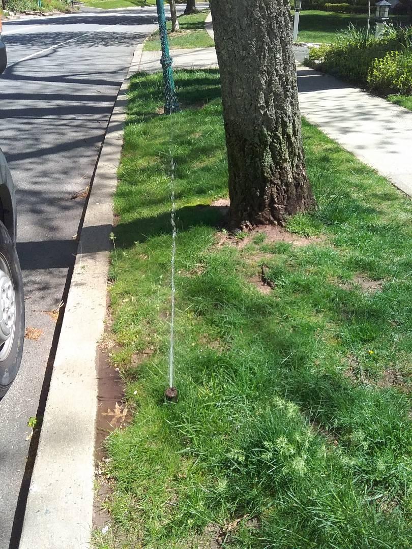 South Orange, NJ - Start up, turn on, IRRIGATION SPRINKLERS!! Broken sprinklers, leaking sprinkler head. Water won't shut off , stuck zone. Ask about our Silver and Gold savings bundles. Call us now!! In South Orange NJ