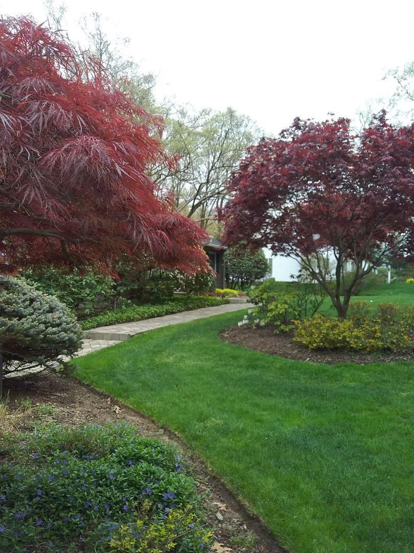 East Hanover, NJ - Irrigation turn on