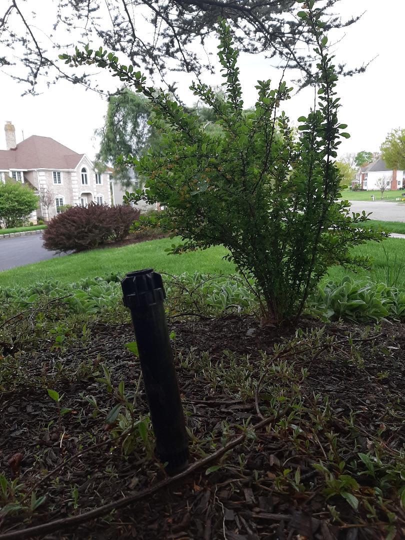 Mendham, NJ - Spring start-up, irrigation sprinkler turn on. In Mendham NJ