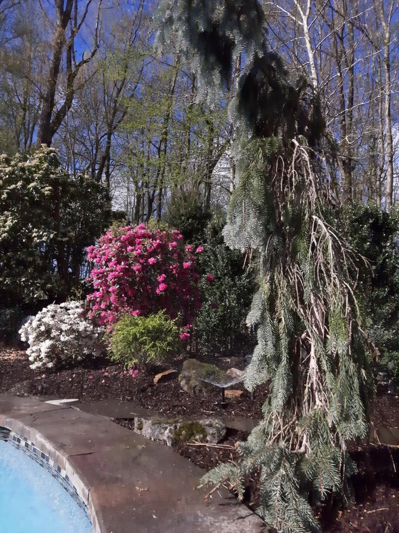 Basking Ridge, NJ - Spring start-up, irrigation sprinkler turn on. In Basking Ridge NJ