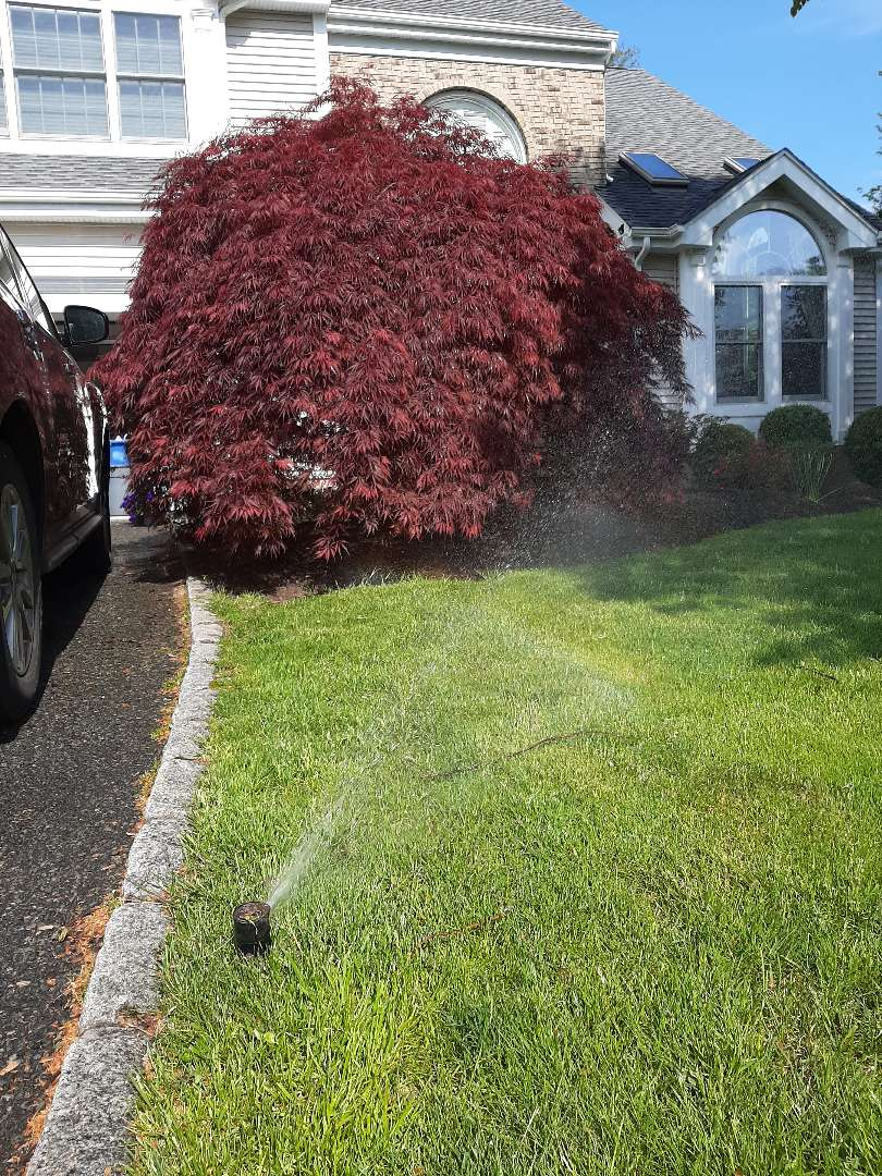 Spring start-up, irrigation sprinkler turn on. In Madison NJ