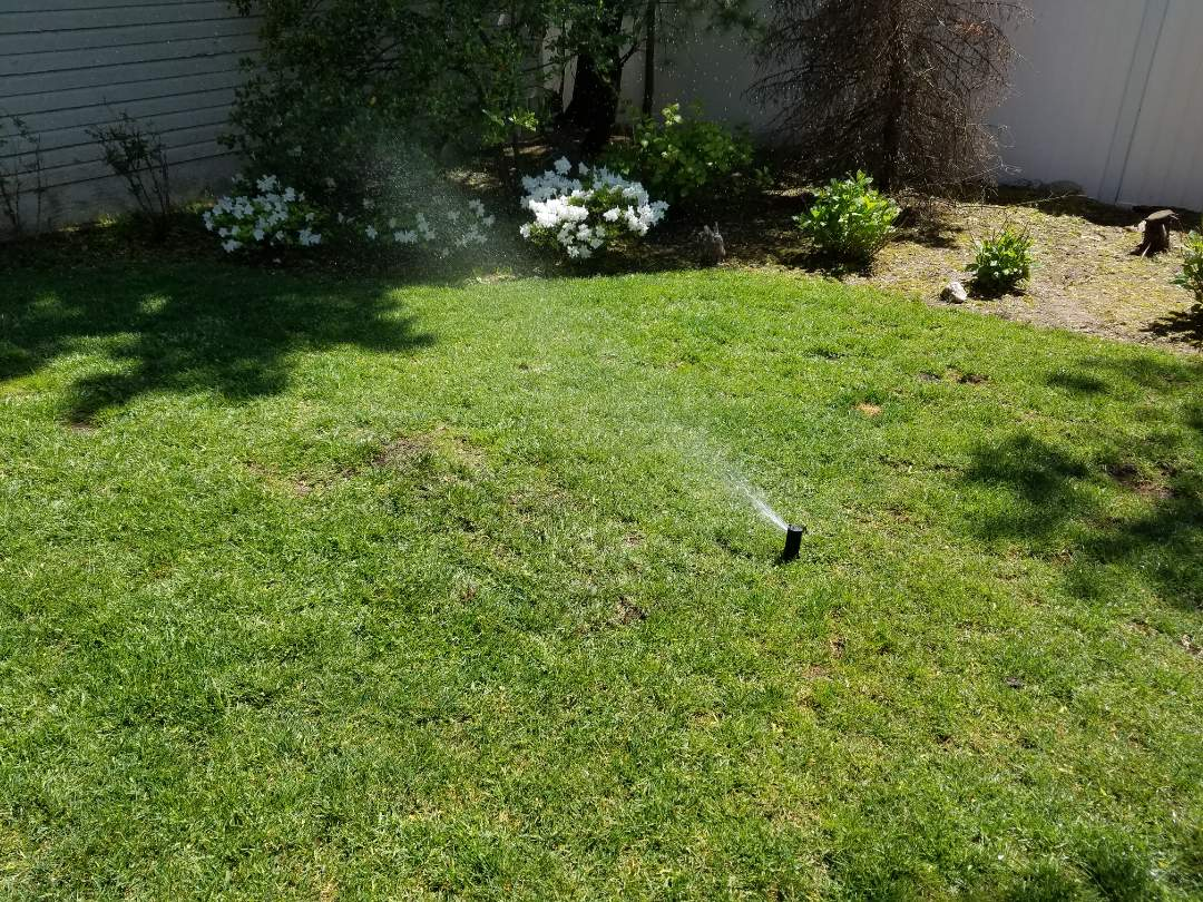 Irrigation repairs fixing leaks from aeration